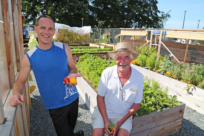 Brian-Injury-Society's-Community-Garden